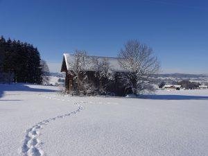 Stadel-Winter-blue-distance